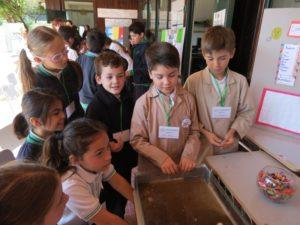 Feria científica primaria